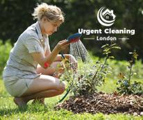 gardening-service-urgent-cleaning-02